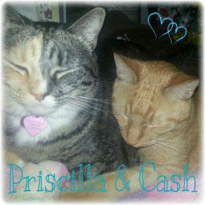 pric&cash
